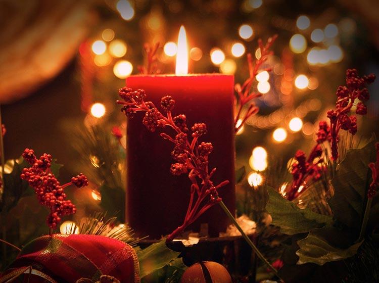 English Chamber Orchestra - Christmas with Vivaldi