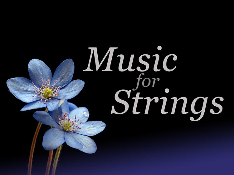English Chamber Orchestra - Music for Strings